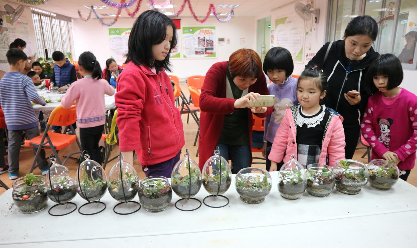 创意满分!15对亲子家庭diy盆栽迎接植树节