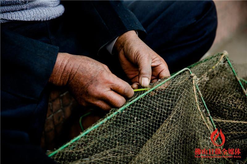 佛山休渔第一天 渔船悉数回归