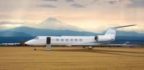 揭秘佛山4架私人飞机主人 全是顺德人!保养年费超千万