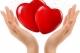 为困难老人办年货 禅城区慈善会发起募捐活动