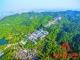 佛山如何建设高品质森林城市?李敏:城郊森林化城区园林化