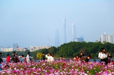 春节长假全国共接待游客3.86亿人次 广东接待游客人数居首位