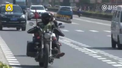 顺德打工小伙背猫骑摩托车返乡:女朋友怕冻 猫不怕冻
