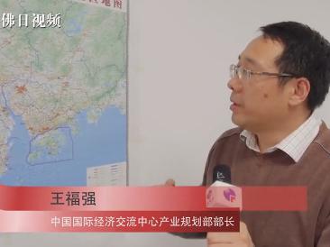 王福强建议佛山:搭建全球创新项目对接平台