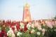 南海丹灶的美景登上了CCTV1的节目!一起来欣赏这花之奇境吧