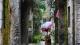 禅城聚焦百姓生活最后十米 创建一批示范街巷、精品街区
