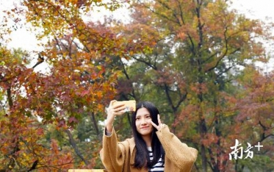 """周末去""""吸氧""""!广东今年免费开放的森林公园将达1000个"""