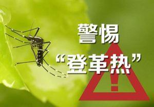 中国大使馆提醒赴安哥拉中国同胞防范登革热