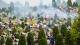 市民推崇环保祭扫 清明首日全市祭扫人数达151万人次