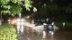 好消息!下雨天道路积水,这三类违章可免罚