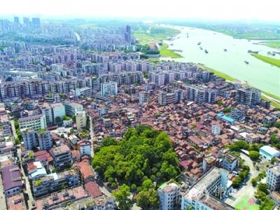 西南涌见证三水30年城市蝶变  菜地变公园 城市换新颜