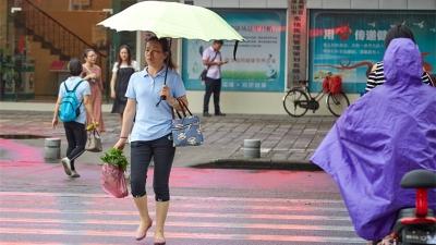 未来几天 高明区雷雨天气仍频繁