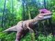 英德宝晶宫推动暑期亲子游项目 带动恐龙科普热