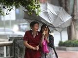 面对台风,佛山街坊在干嘛?