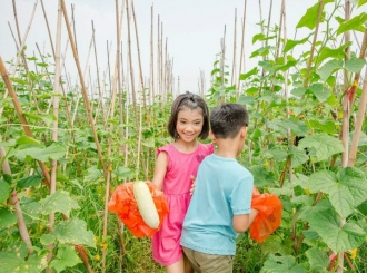 佛山市民这样庆祝首届中国农民丰收节