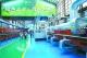 质量强市|打造品牌南海 助推高质量发展