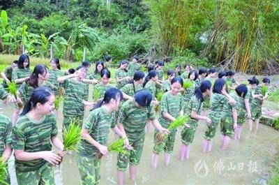 美高梅在线娱乐华侨中学组织学农活动