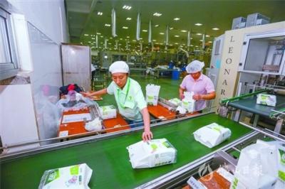 南海西樵:以产业集聚式发展撬动新动能