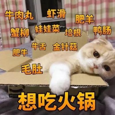 直击灵魂的提问!火锅只能吃三样菜,怎么选?