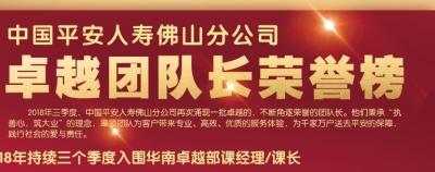 中国平安人寿佛山分公司卓越团队长荣誉榜