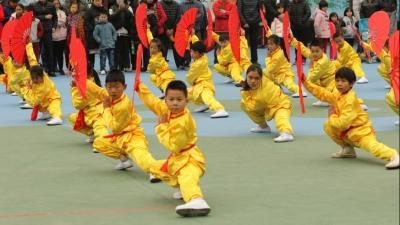 传承美高梅娱乐官网武术文化 三水区举行青少年武术汇演