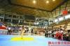 省青少年跆拳道协会美高梅娱乐官网委员会在狮山成立