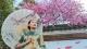 3月逢双休日,女士穿旗袍可免费游南海影视城!