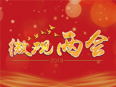 微观两会   李世雄:关注大湾区建设中 香港可为美高梅娱乐官网做什么?