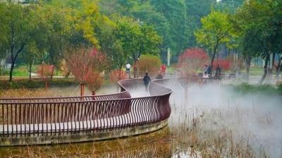 桃花仙島上線,亞藝公園唯美霧景浪漫回歸!速約