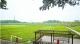三水将与华南农业大学合作打造千亩创新型农业产业园区
