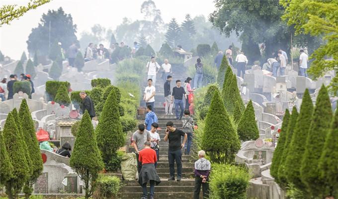 清明假期第二日,佛山祭掃人數突破51萬