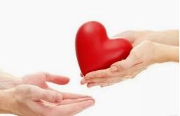 5个签约项目总资金50万元  高明区慈善会搭建公益慈善平台
