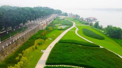 探寻绿道之美 共享绿色生态:高明西江画廊绿道