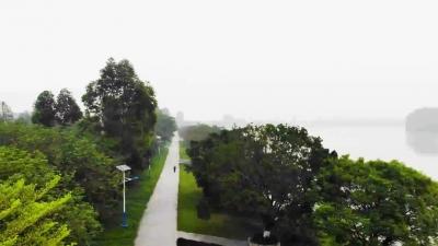探寻绿道之美 共享绿色生态:三水区云东海绿道