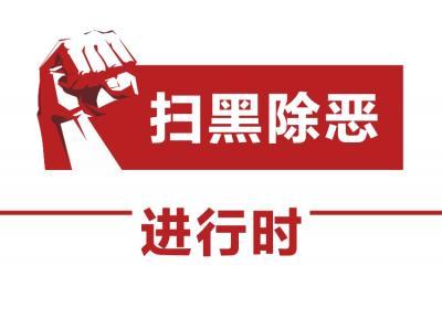 """三水法院公开开庭审理全区首批涉""""套路贷""""诈骗案"""