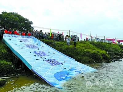 三水近200名市民参与 投放鱼苗460万余尾