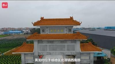 黄龙村——党建下的黄龙村蝶变