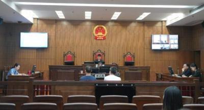 偽造庭審證據 構成虛假訴訟罪  兩男子被判刑