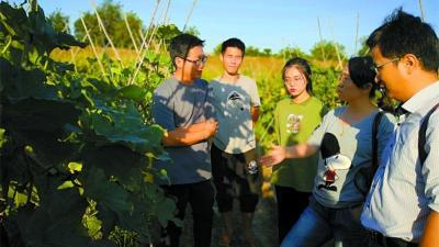 美高梅娱乐官网开展省农业科技示范市创建工作一年,农业发展提质增效