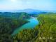 高明云勇林场:最美林场的绿色传承
