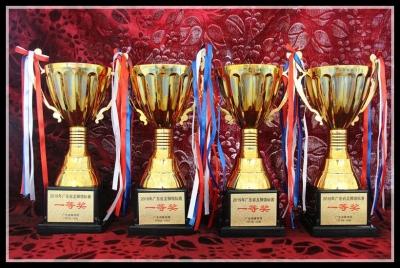 黎涌小学龙狮团扬威省锦标赛  囊括少年组4个金奖