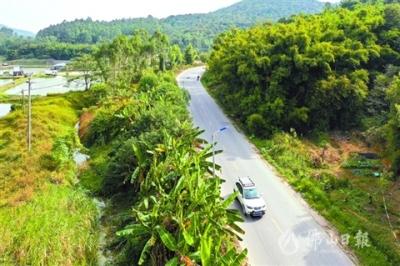 """高明区推进""""四好农村路""""建设,年内建成超42公里"""