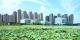 三水新城:城市新标杆强势崛起