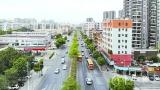 广海大道:三水第一条公路的迭代演变