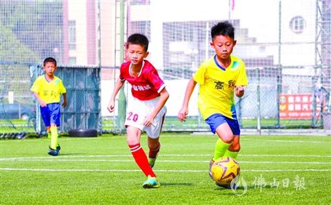 廣東省民間青少年足球聯賽佛山賽區收官