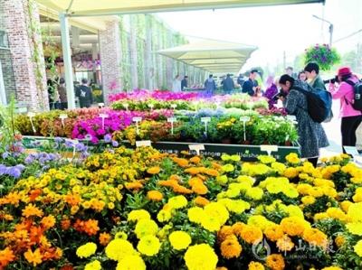 顺德陈村镇:打造轨道上的新发展理念产业城