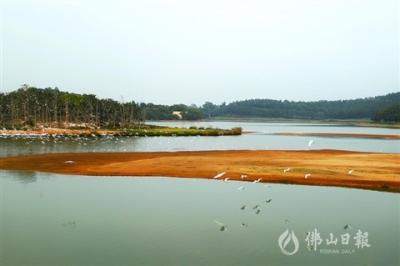 高明白鷺湖生態保護區:借生態優勢促旅游發展