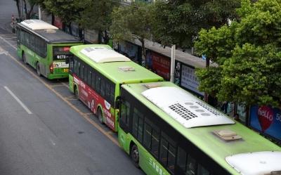"""廉洁文化""""坐上""""公交车 禅城105辆公交打造廉政风景线"""