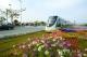 高明有軌電車:移動的城市風景線