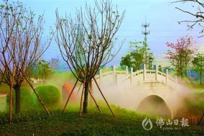 """王借岗森林公园: """"千亩绿心""""之变"""